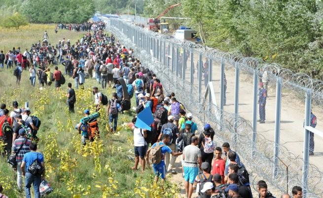 Границата между Сърбия и Унгария