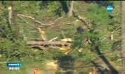 Торнадо помете град в щата Масачузетс