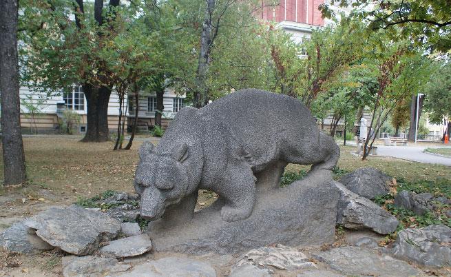Градинката с мечето е любимо място в Габрово