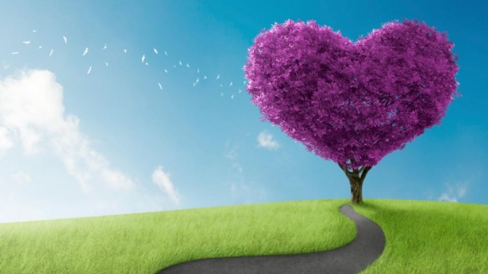 За любовта и природата