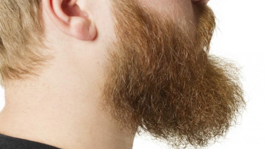 Защо му е на мъж да продава брадата си за 1 млн. долара?