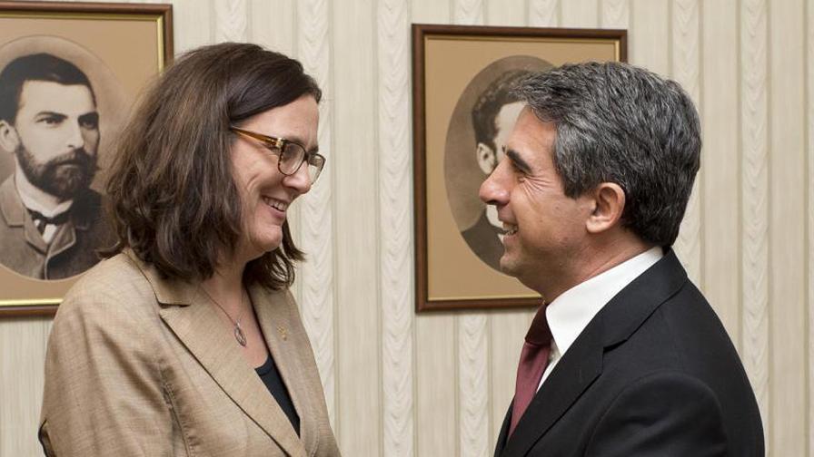 Малмстрьом и Плевнелиев