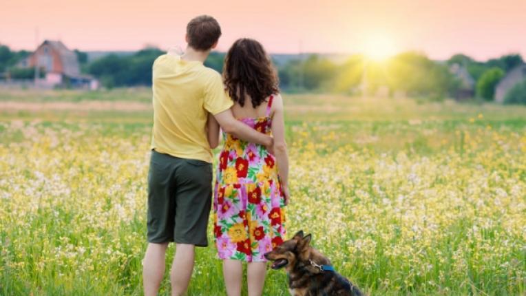 домашен любимец партньори връзка двойки животно куче взаимоотношения