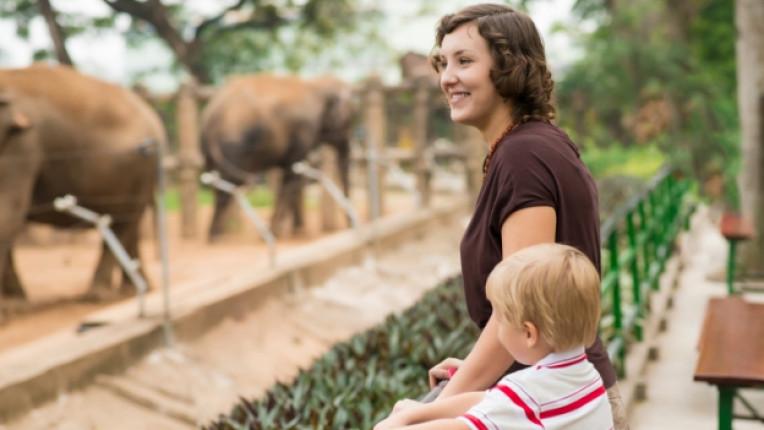 зоологическа градина зоопарк