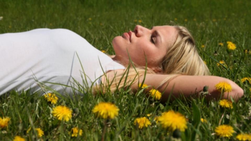 Да преборим слънчевото изгаряне и ухапването от насекоми