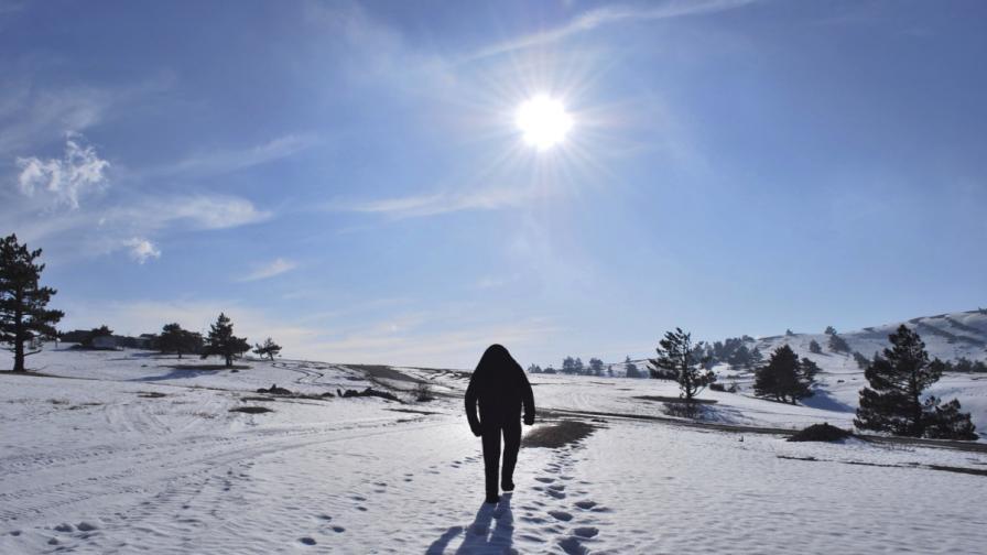Учени разбиха легендите за Йети и Голямата стъпка