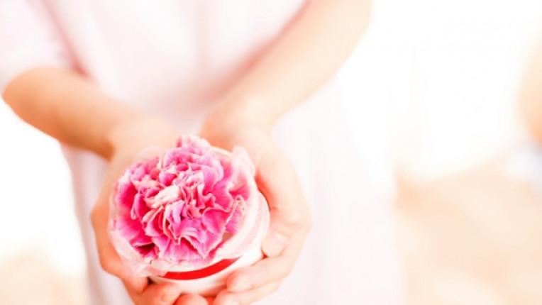 карамфил свойства храносмилане перисталтика дъх парфюм фибри