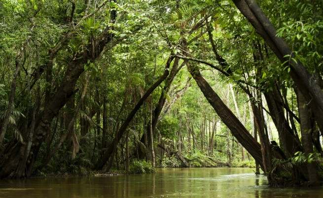 Мистериозна кипяща река се крие в сърцето на Амазония