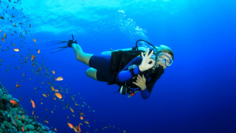 гмуркане дайвинг море морско дъно водолаз