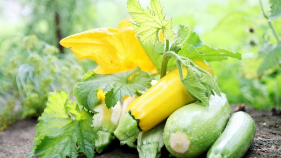 Зеленчуци вместо вода