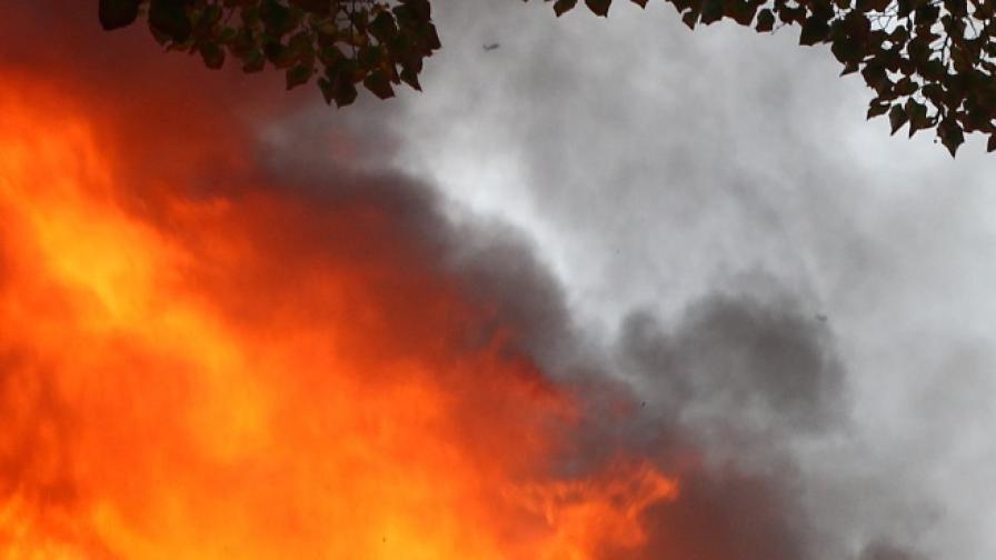 Плашеща статистика: Пожарите през 2014 г. - колкото два пъти площта на Португалия