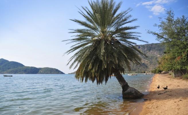 Езерото Малави