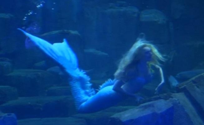 Малката русалка оживява в аквариум в Париж