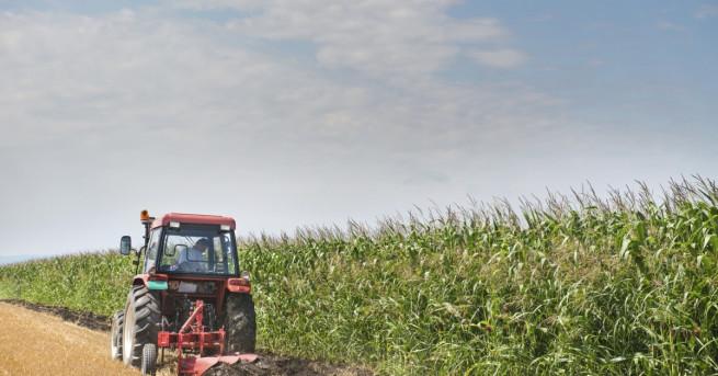 Земеделските стопани ще получат през 2018 г. до 84 млн.