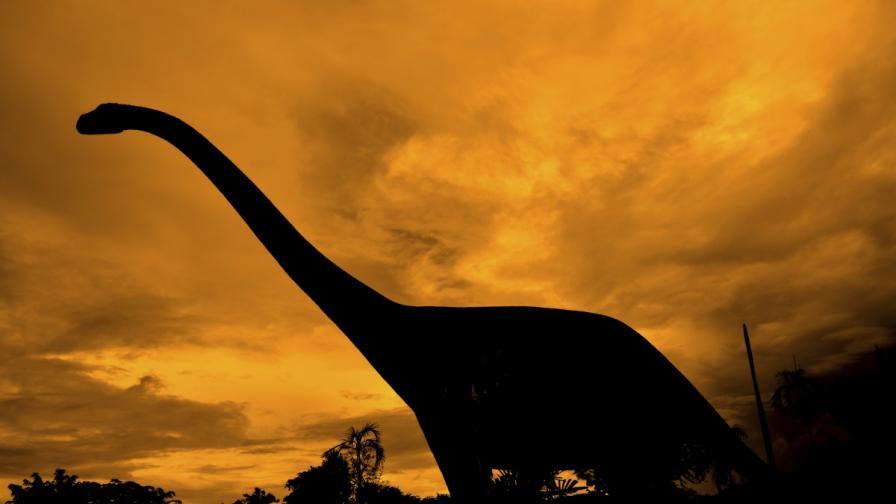 Аржентински динозавър се е извисявал над Т. рекс