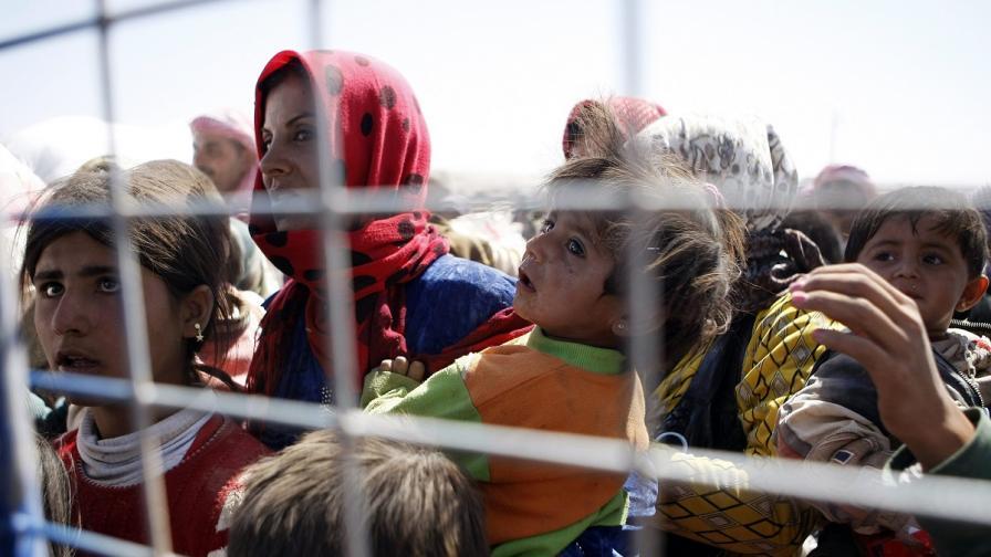 Германия осъди ужасния тормоз над бежанци в страната