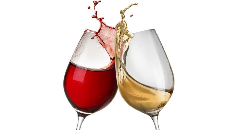 Празник на виното в Париж (видео)