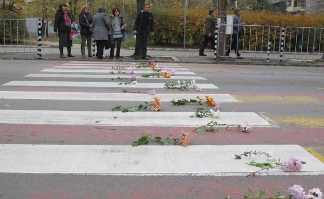 Пешеходна пътека от хризантеми направиха русенци в памет на жертвите на катастрофи