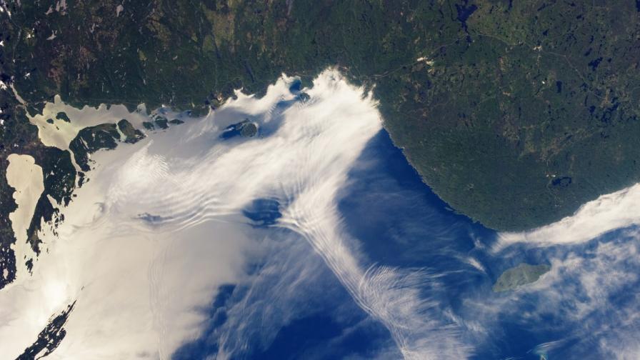 НАСА ще картографира триизмерно земните гори от космоса