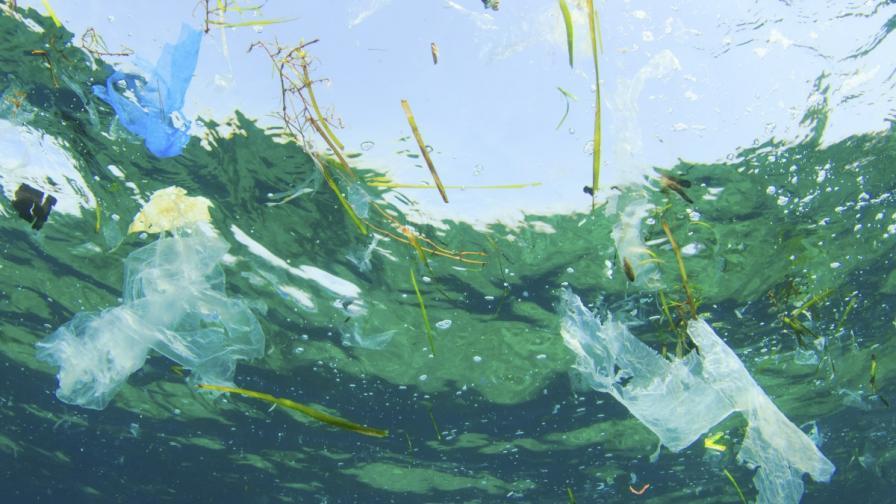 Пластмасовите отпадъци в океаните – твърде много