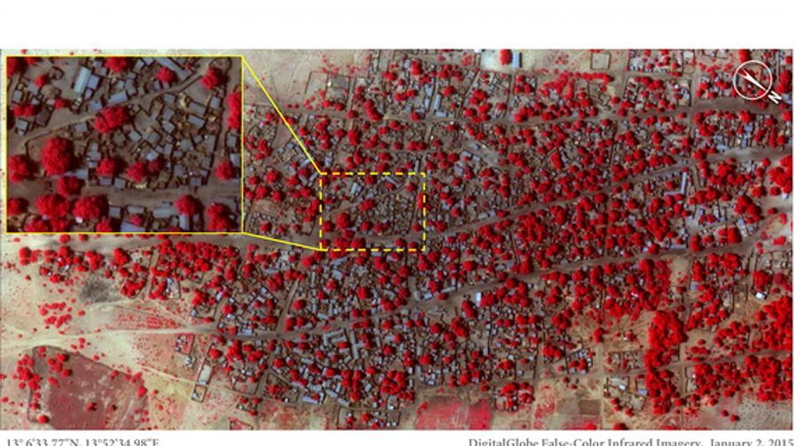 """""""Боко харам"""" пое отговорност за мащабното клане в Бага"""