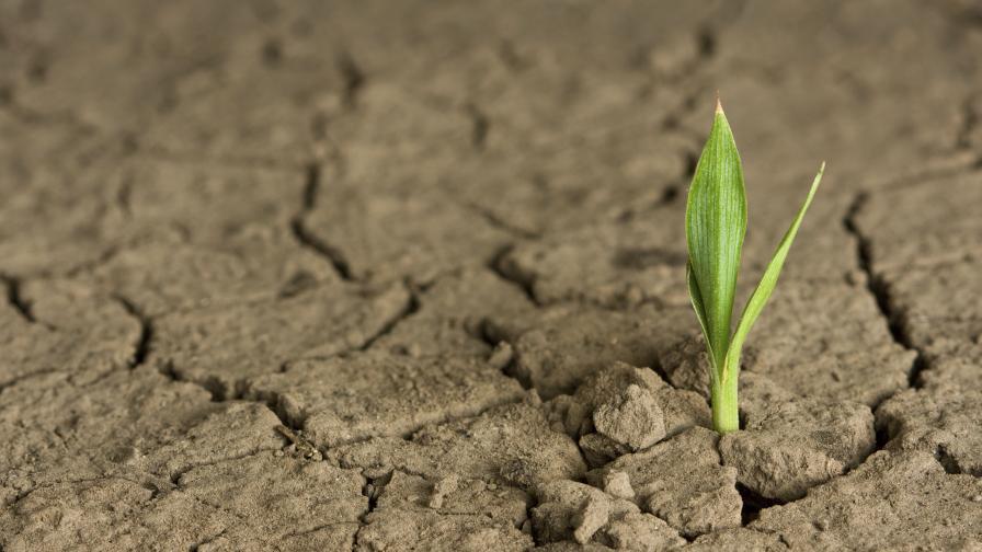 Вашингтон се ангажира с цели за климата до 2025 година