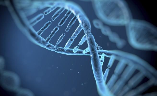 ДНК данните на милиони хора вече не са анонимни