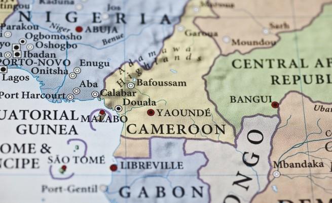 """Ислямисти от """"Боко харам"""" избиха десетки в камерунски град"""