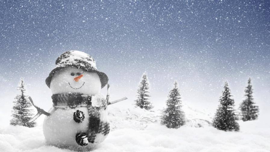"""Рекордът """"снежен човек за час"""" вече е мания"""