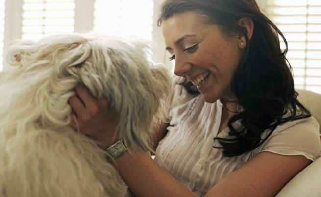 Защо кучето е най-добрият терапевт?