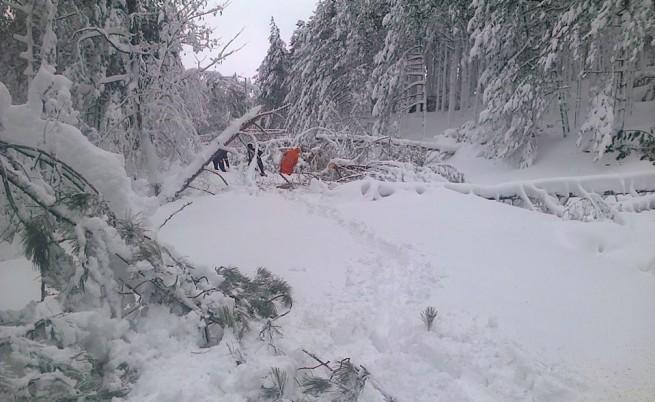 Снежното бедствие в Кърджалийско взе нови две жертви