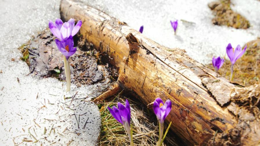 Пролетта настъпва със слънце и вятър