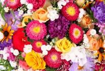 ТЕСТ: Какво цвете си ти?