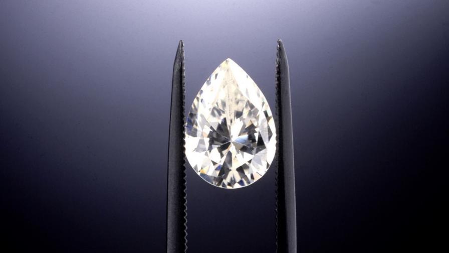 Жена откри близо 4-каратов диамант в парк в САЩ
