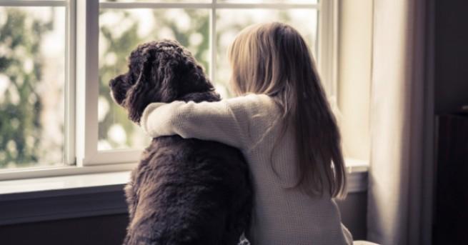 Снимка: Домашните любимци могат да бъдат най-добрият приятел на детето