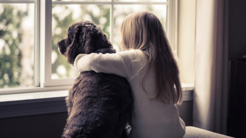 Домашните любимци могат да бъдат най-добрият приятел на детето