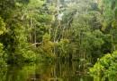Нова огромна екологична катастрофа заплашва света