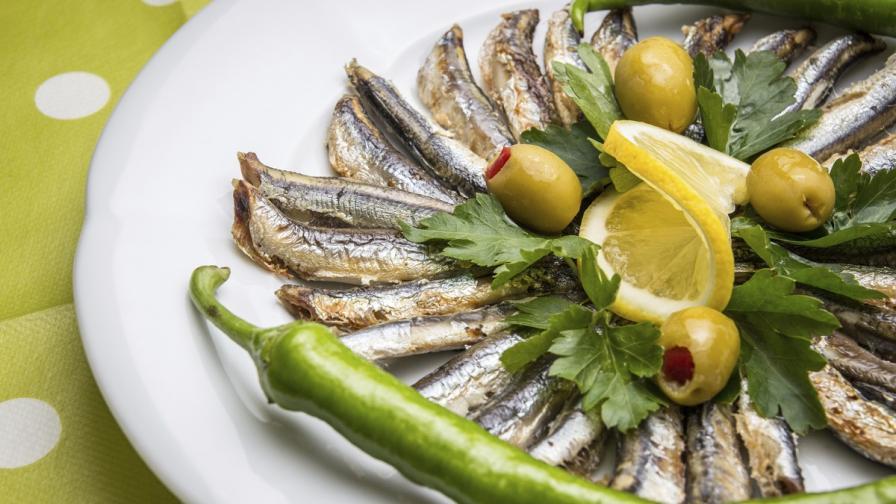 Учени: Черноморската риба е без химикали и е богата на омега 3 киселини