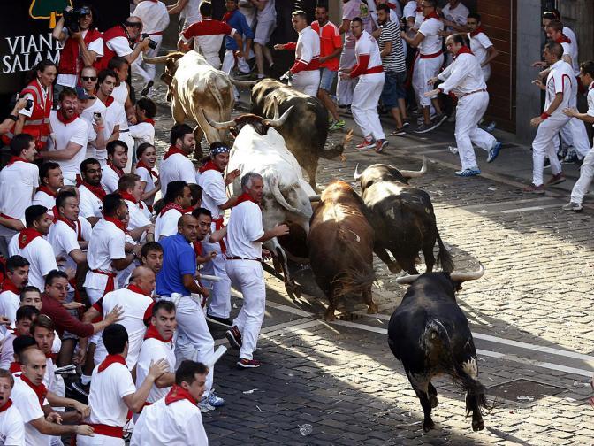 сан фермин бикове