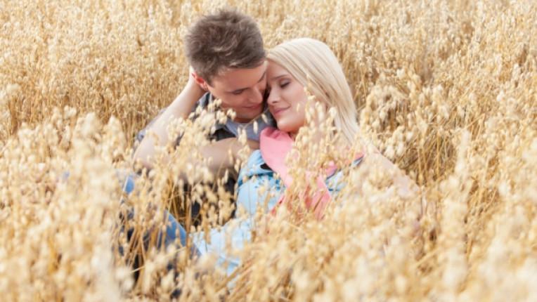 ферма село романтика природа
