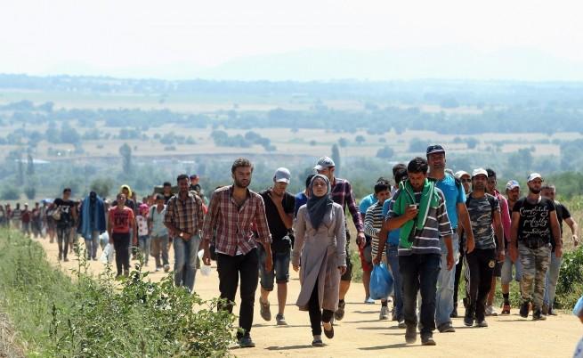 Бежанска вълна продължава да залива Македония и Сърбия