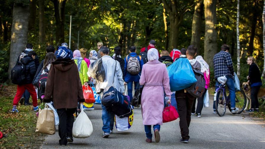 Холандия отказа храна и подслон на мигранти без статут