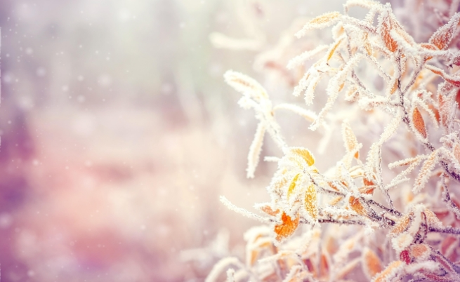 Радостта от първия сняг в София преди и сега (видео)