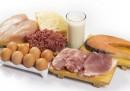Животинският е най-добрият източник на протеини