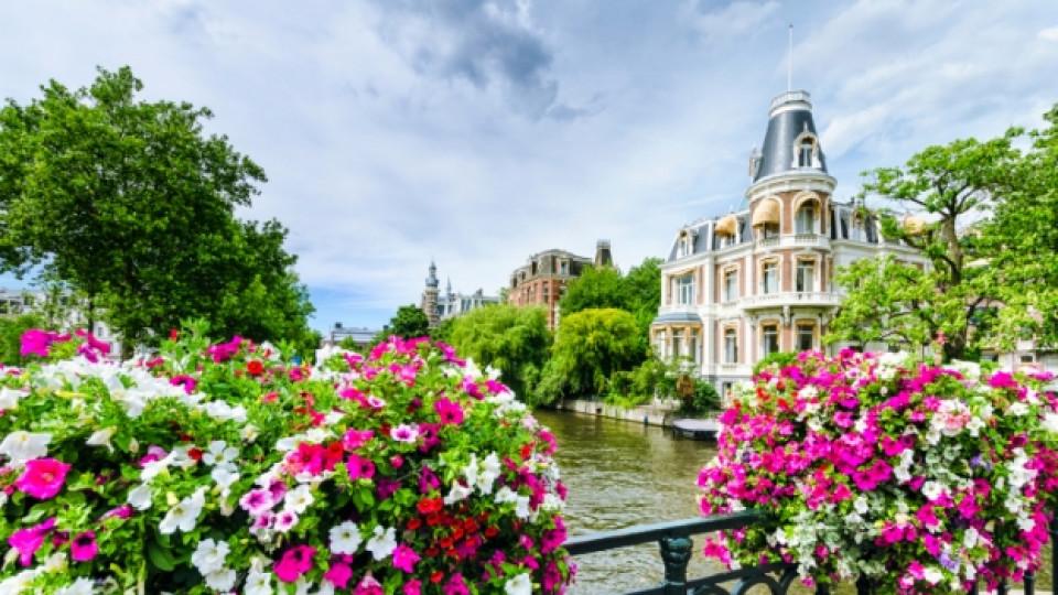 Вкусни щрихи от Амстердам