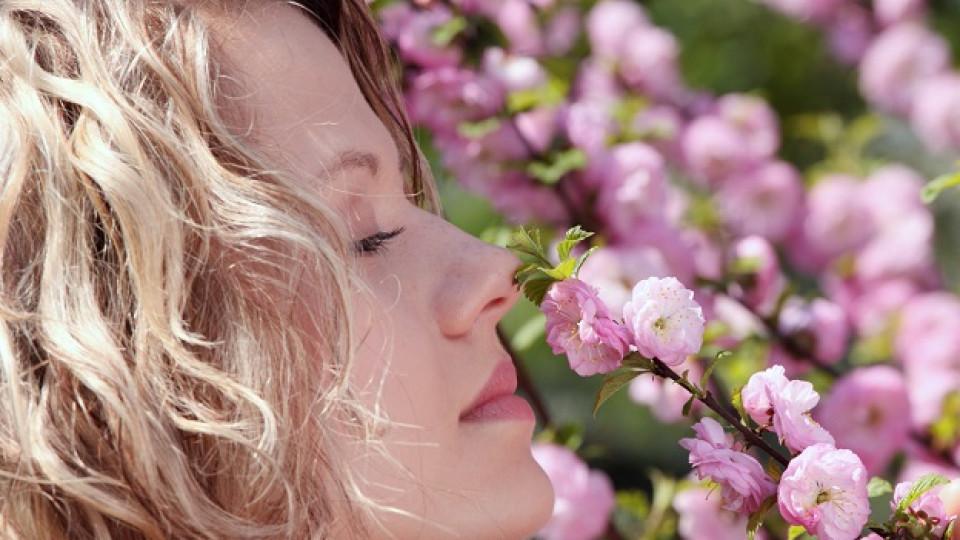 Парфюмите на пролетта – розови като вишнев цвят