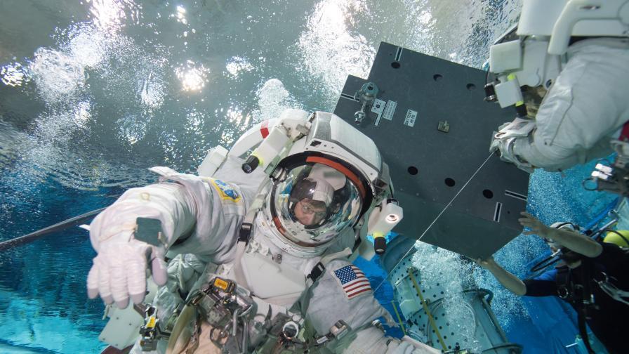 Горила на Международната космическа станция