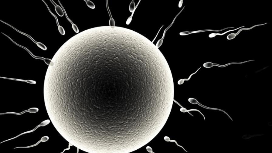 Революция: Роди се бебе с ДНК от трима родители