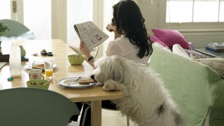 3 лесни идеи за здравословна закуска