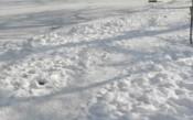 Снегът бави третия ден от тестовете във Формула 1